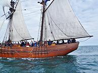 A calm sail