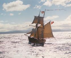 In port Phillip Bay