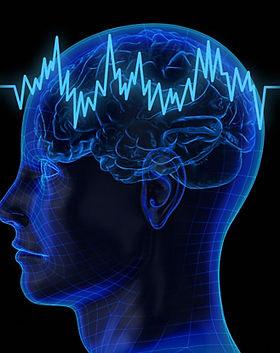 brain400.jpg