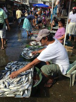 Wet Market