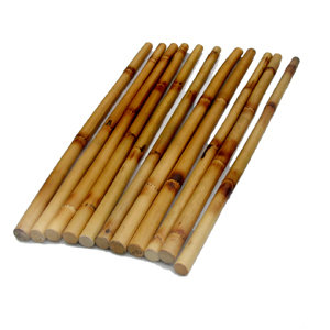 Training stick BASIC