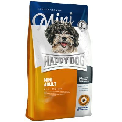 Adult mini - Happy dog