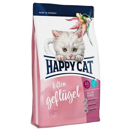 Happy cat Chaton