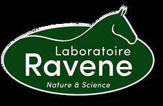 cropped-cropped-logo-ravene-1.png