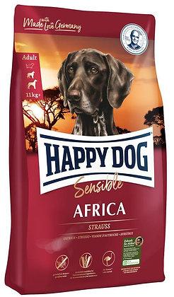 Africa - Happy dog
