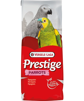 Perroquets elevage