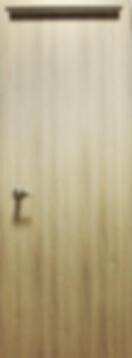 puerta1.png