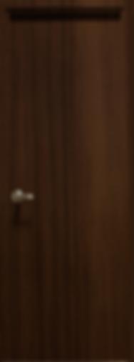 puerta3.png