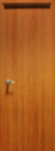 puerta2.png
