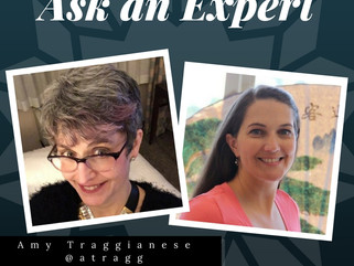 Ask the Experts: An interview with Holly Bess Kincaid and Amy Traggianese