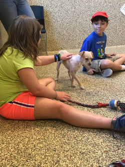 SPCA visit