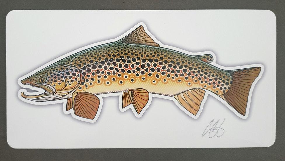 """Brown Trout """"Trutta"""" Sticker"""