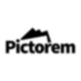 Pictorem Logo.png
