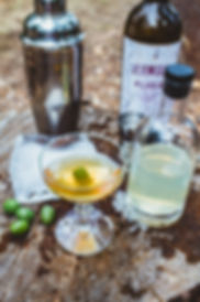 FTW - S7E2 - Camp Gin Martini Kev 3.jpg