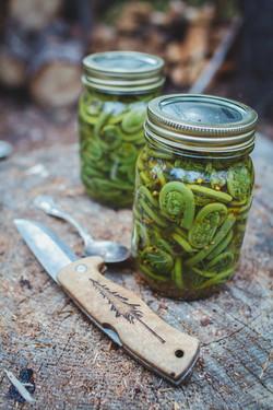 FTW - S7E3 - Fiddlehead Pickle Jar Compl