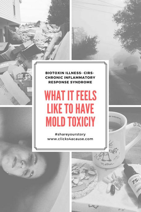 When Mold attacks