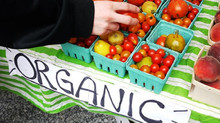 Sourcing organic food from LatAm