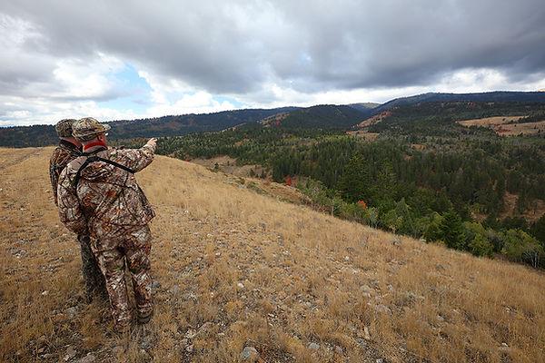 Bull Elk Hunting