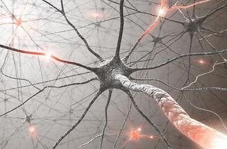 réseau_neurones.jpg