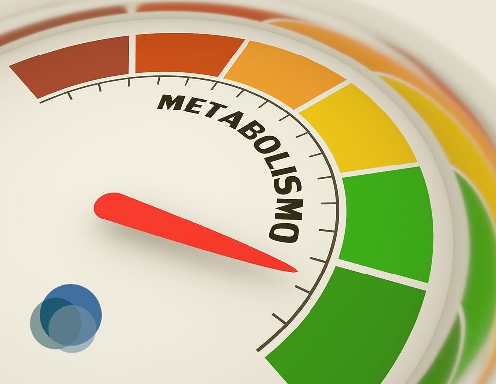 Ambas as dietas propõem uma significativa redução no consumo de carboidratos