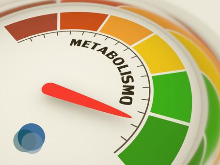 Alimentos que emagrecem por acelerar o metabolismo
