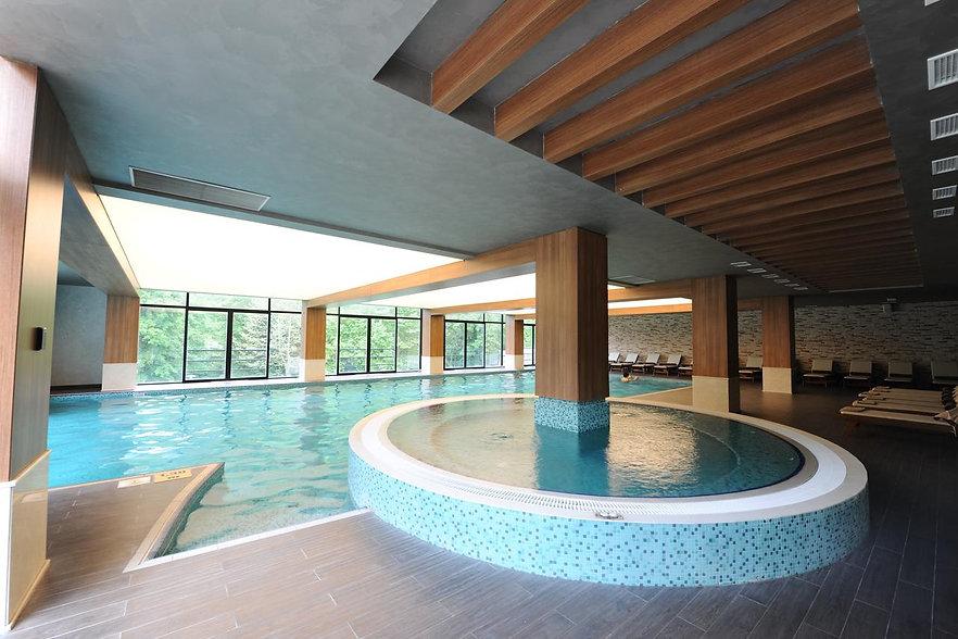 бассейн в гост боржоми ликани.jpg