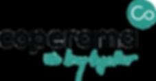 Logo_Standard.png