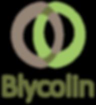 LOGO_BLYCOLIN_FC.png