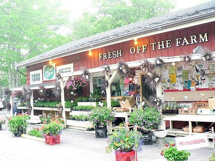 fresh-off-the-farm-store-front-1.jpg