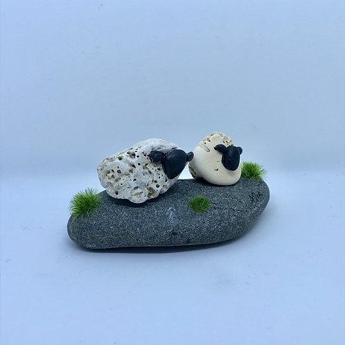 Pebble Sheep