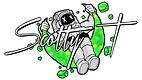 logo ST.png