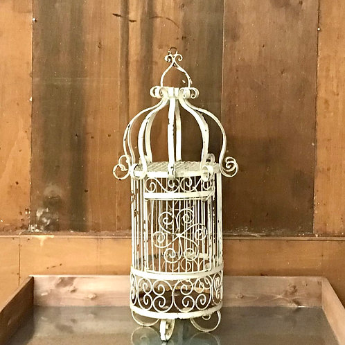Wrought Iron Cage Planter