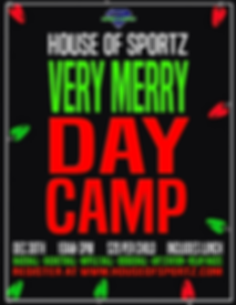 Very Merry Day Camp 2019