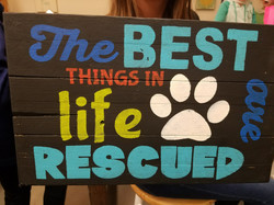 Rescues