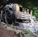 Old Sawmill Grill & Mini-Gol.png