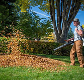 Commercial Leaf Blowing Service