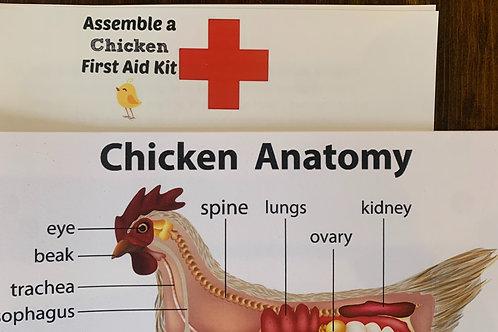 Chickens 101: Workshop Book