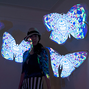 Butterfly Projection Mapping