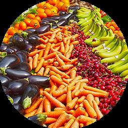 EUROLAB ANTI AGING ISHRANA NUTRICIONIST.