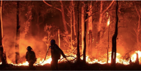 Australia's Black Summer Fire