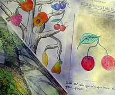 Je dessine mon fruit préféré...