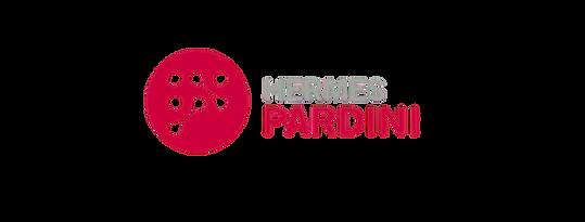 hermes-pardini-pard3-removebg-preview.pn