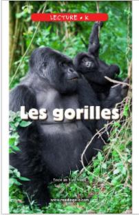 Les gorilles.png