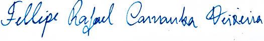 assinatura 2.png