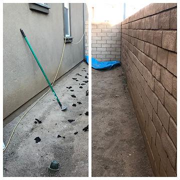 Dog Poop Removal Lancaster, CA.jpg
