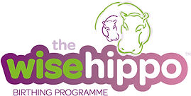 the-wise-hippo-landscape-logo-500x253.jp