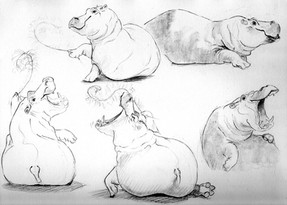 Are you down with The Hippos?