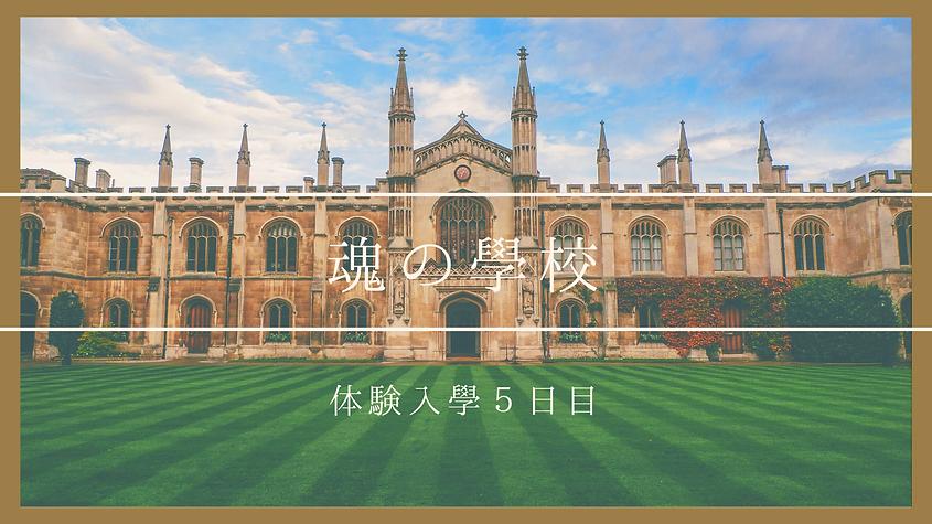 年間顧問契約 (5).png
