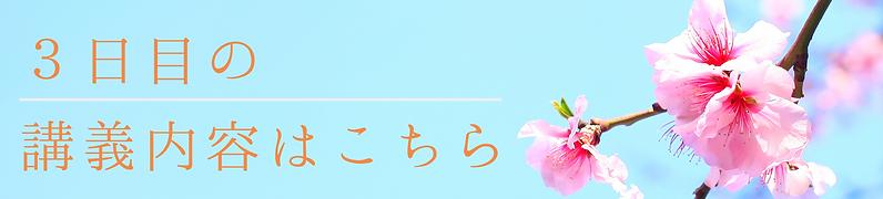 名称未設定のコピーのコピー (13).png