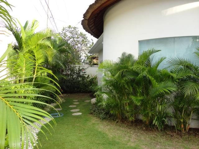 Tropical Gerden